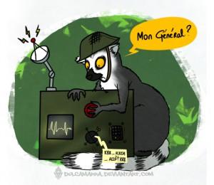 Maki Catta soldier